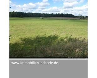 44.937 Quadratmeter Grünland mit Bachlauf - Uelzen OT Molzen Niedersachsen